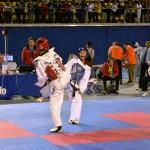 Foto: Federación Chilena de Taekwondo WTF.