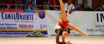 Foto: Prensa fedegichi