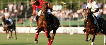 Foto: Federación Chilena de Polo